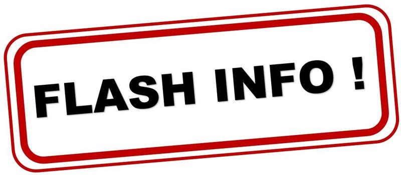 """Résultat de recherche d'images pour """"flash info logo"""""""