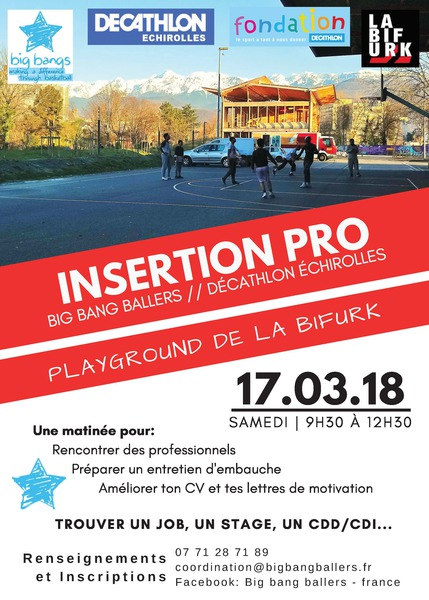 insertion professionnelle - grenoble iser-bordier